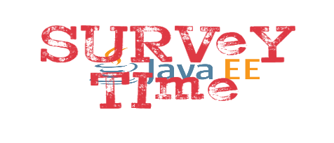 A short survey on security aspects in Java-based web applications – Help needed!